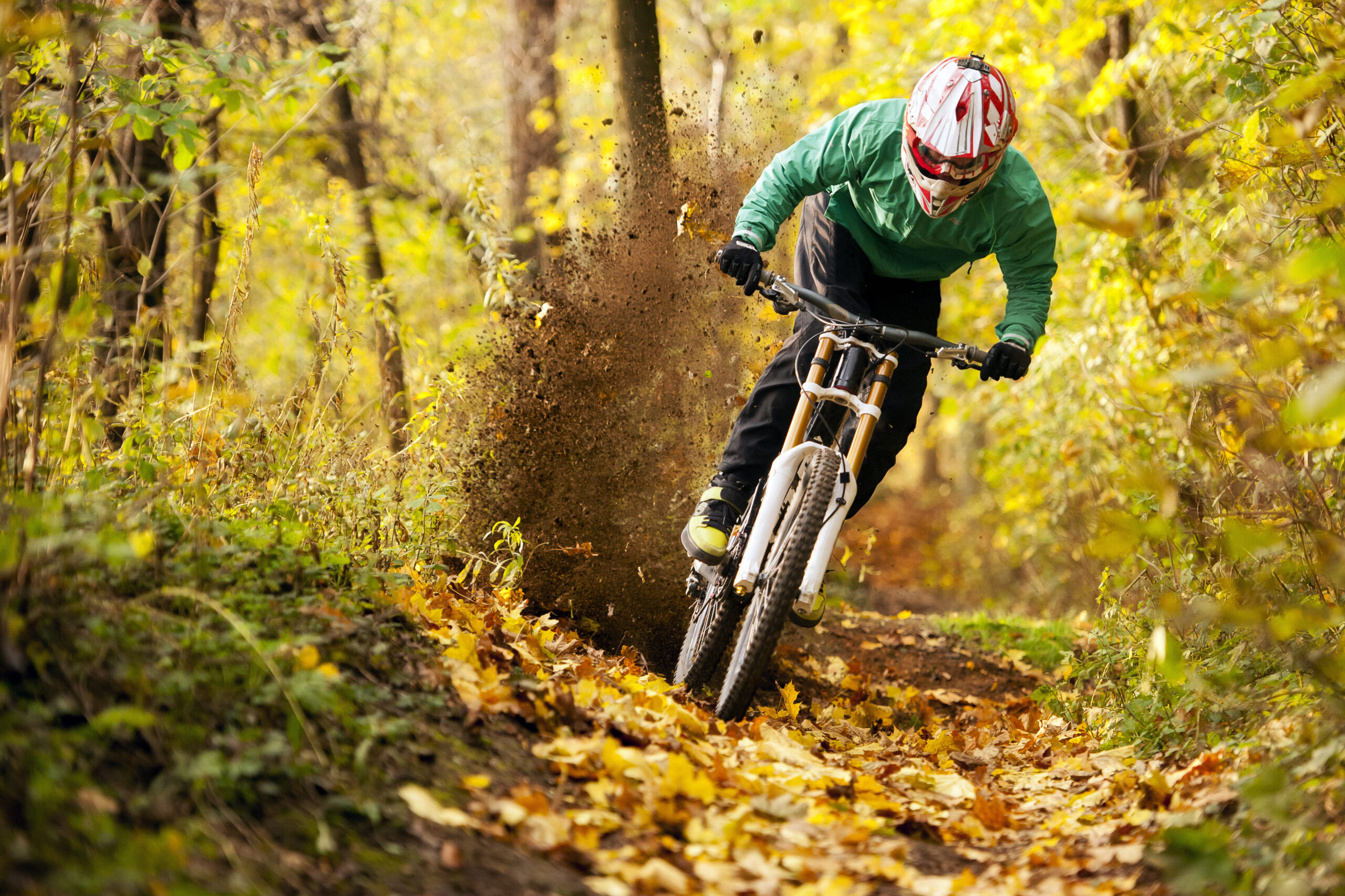 Riding in the Autumn